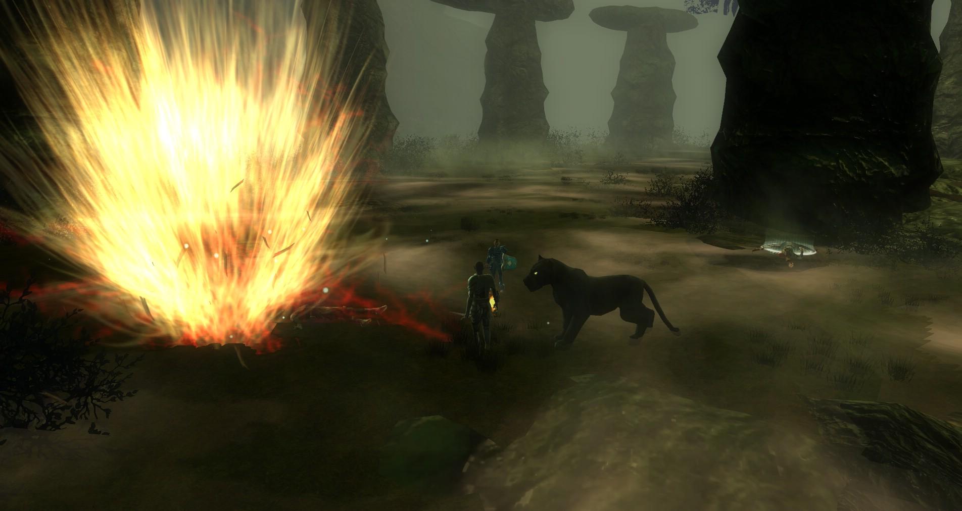 ddmsrealm-ddo-druids-curse-staff-go-boom