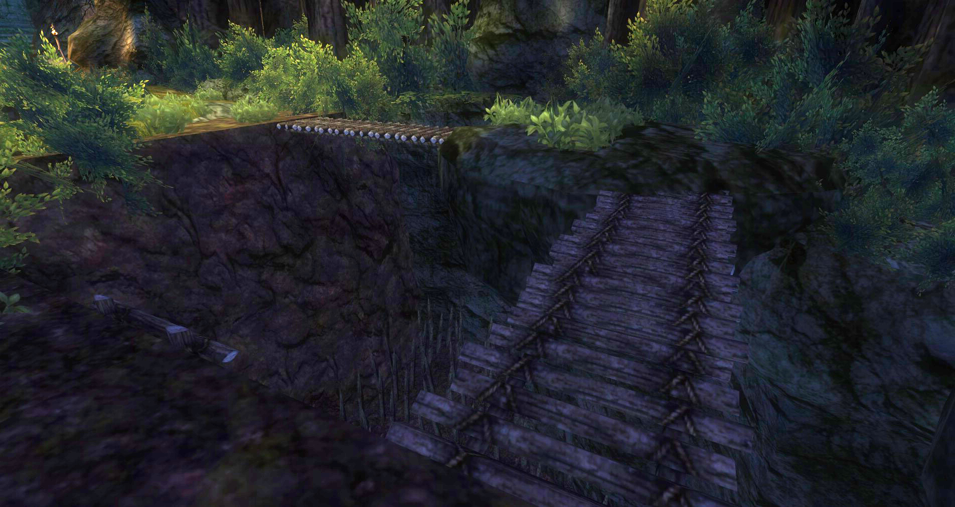ddmsrealm-ddo-thorn-and-paw-bridge-over-pit