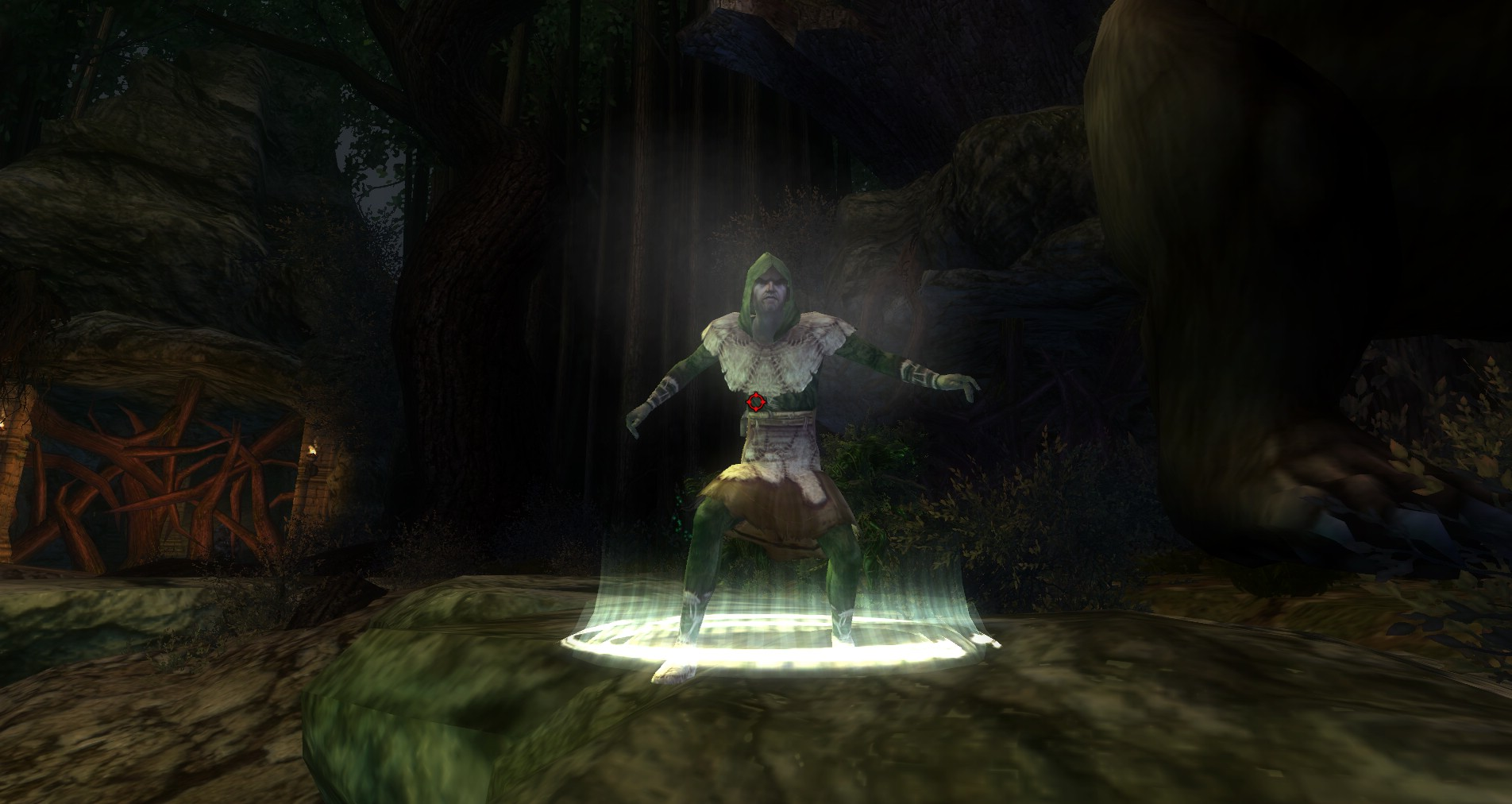 ddmsrealm-ddo-thorn-and-paw-druid-guardian