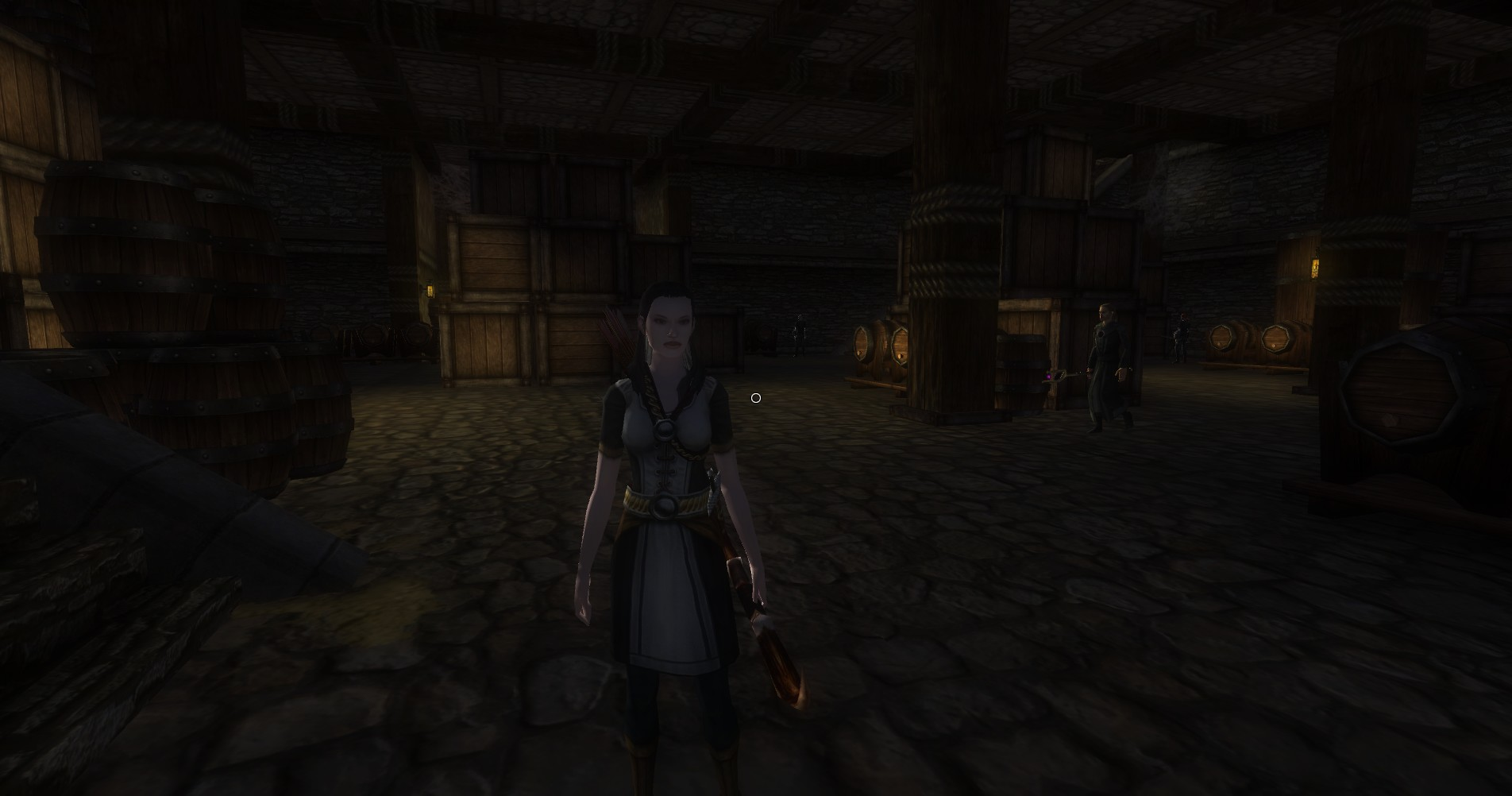 ddmsrealm-ddo-u16-stay-at-the-inn-tarys-minion