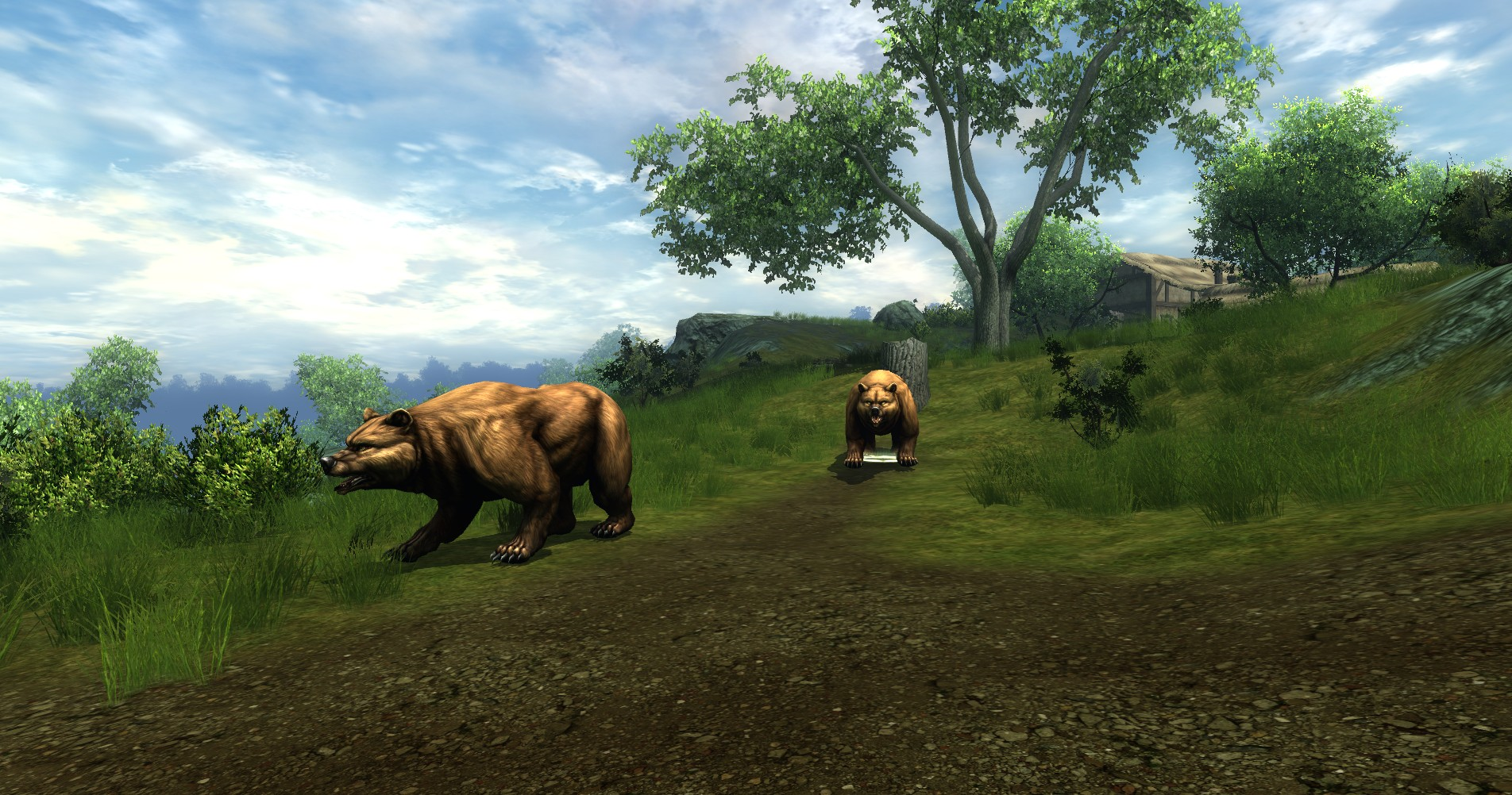 ddmsrealm-ddo-u16-high-road-bears
