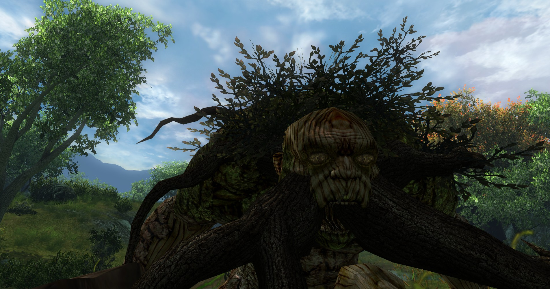 ddmsrealm-ddo-u16-high-road-wood-woad