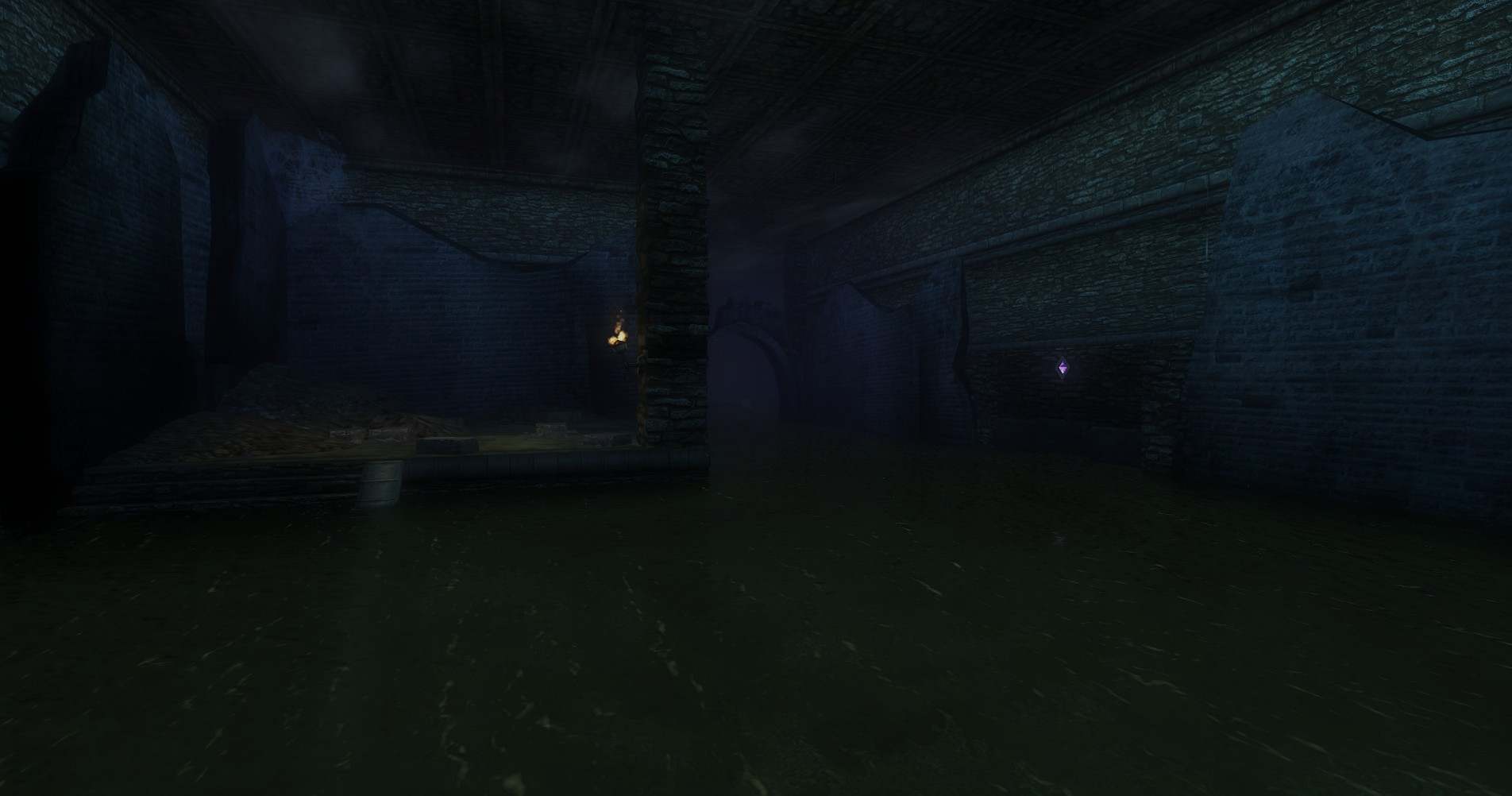 ddmsrealm-ddo-u16-rest-stop-flooded-dungeon