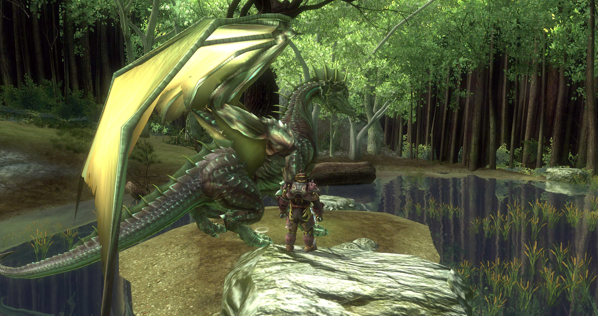 ddmsrealm-ddo-the-kings-forest-dragon-friend